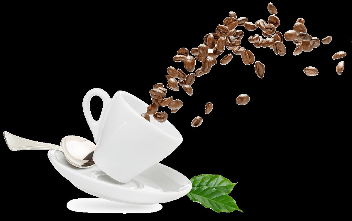 Home Page Appalachian Coffee