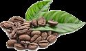 Shipping Cirrrusly Fresh Coffee